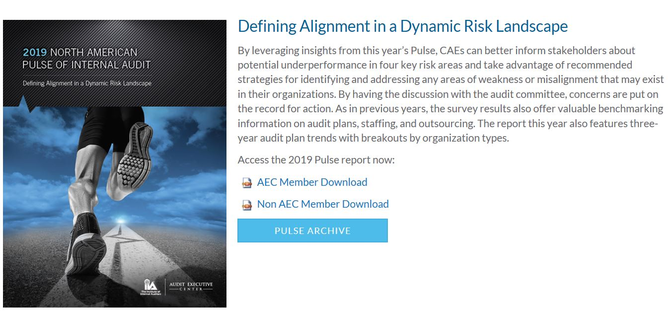 2019 North American Pulse of Internal Audit -report